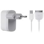 Micro Ac 1a Wall Charger iPod/ iPhone Cable